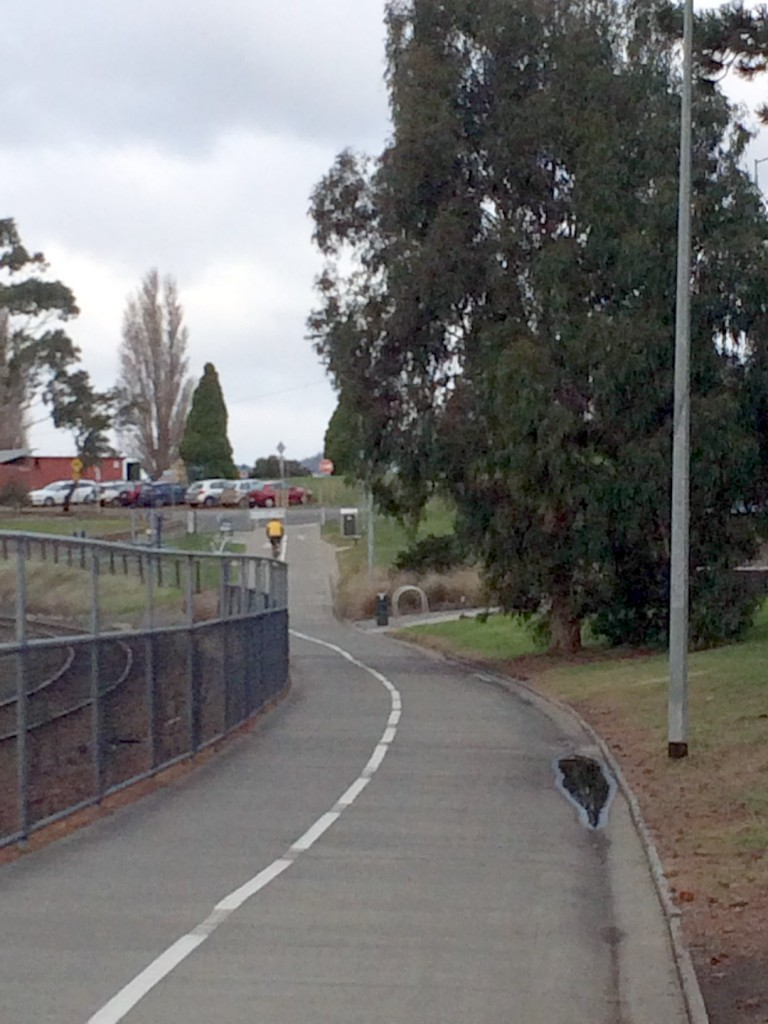 The bliss of the Intercity Cycleway